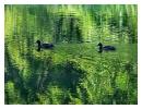 ssp-jezioro-szmaragdowe06
