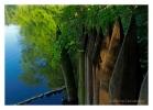 ssp-jezioro-szmaragdowe07